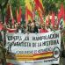 aliantza_nazionalak_deitutako_manifestazioa