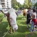 idiak_ere_festan_2011_08_05
