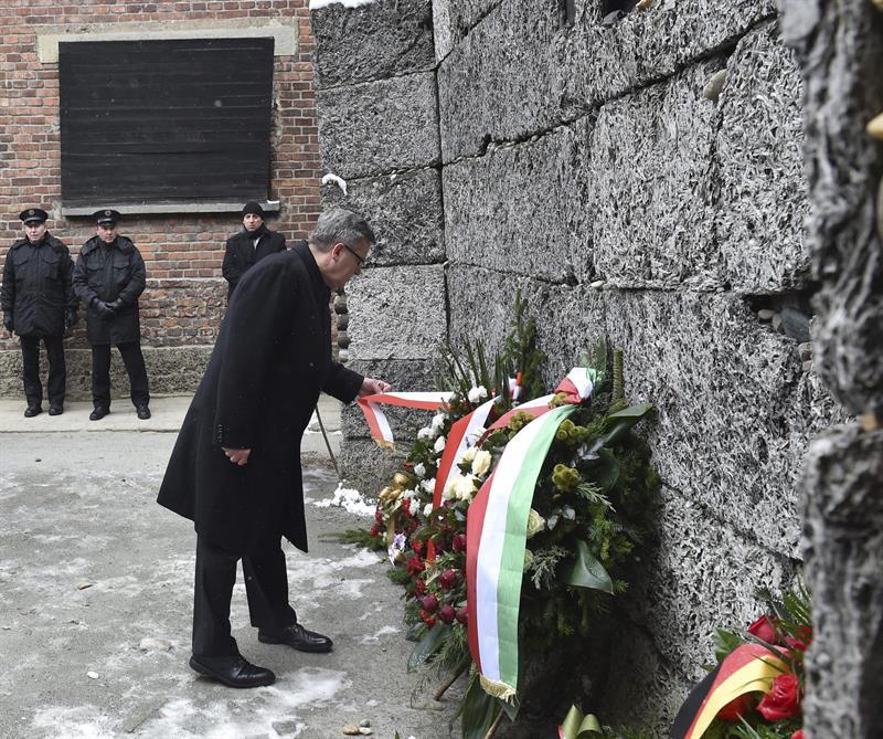 Bronislaw Komorowski Poloniako presidentea, lore eskaintza egiten, Auschwitzen. ©Jacek Bednarczyk / EFE