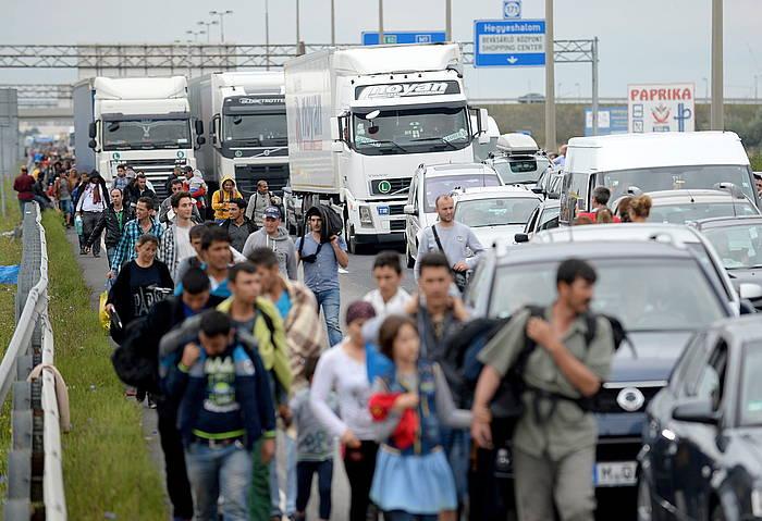 Ehunka errefuxiatuk oinez zeharkatu dute Hungaria eta Serbia arteko muga. ©Roland Schlanger / EFE