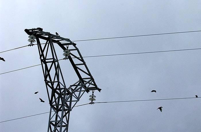 Bideak energiaren negozioari