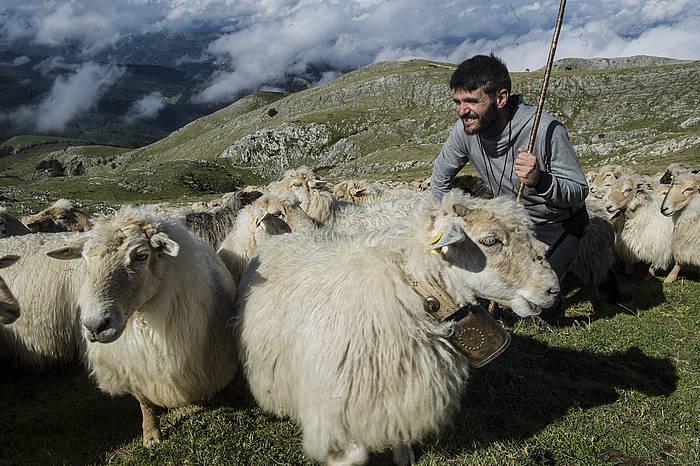 Joseba Insausti artzaina, ardiekin Aralarren. ©Jagoba Manterola / Argazki Press