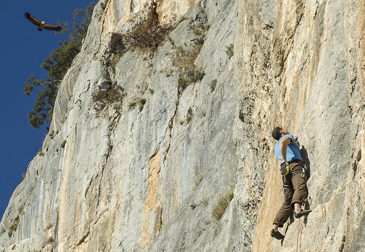 Eskalatzaile bat, Etxauriko hormetan eskalatzen, sai baten begiradapean. ©JAGOBA MANTEROLA / ARGAZKI PRESS