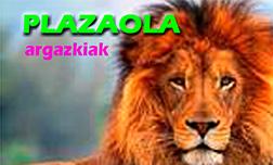 18384_Plazaola_argazkiak
