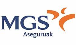 19234_MGS_aseguruak