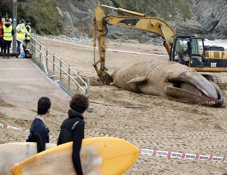Balea Sopelako Atxabiribil hondartzan