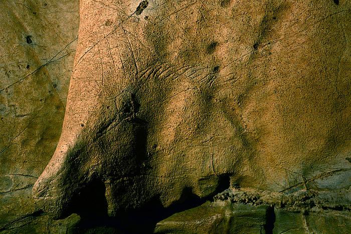 Aizbitarten aurkitutako irudietako bat