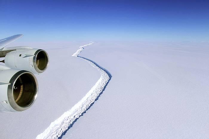 Arrakala bat  Antartikoko Larsen C eremuan. /