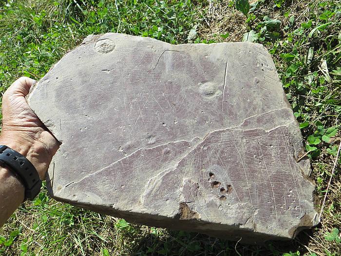 Basagaingo herrixka gotortuan aurkitutako pieza, Anoetan (Gipuzkoa).
