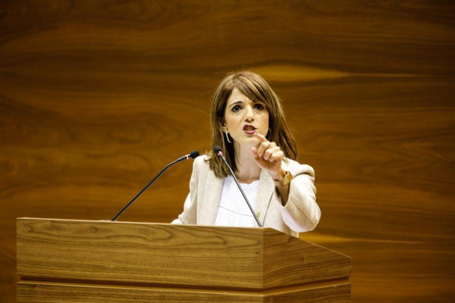 Maria Jesus Valdemoros Navarra Sumako parlamentaria ©Nafarroako Parlamenta
