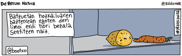 Zaldieroa