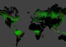 Baso eremuekin osatu duten mapa.