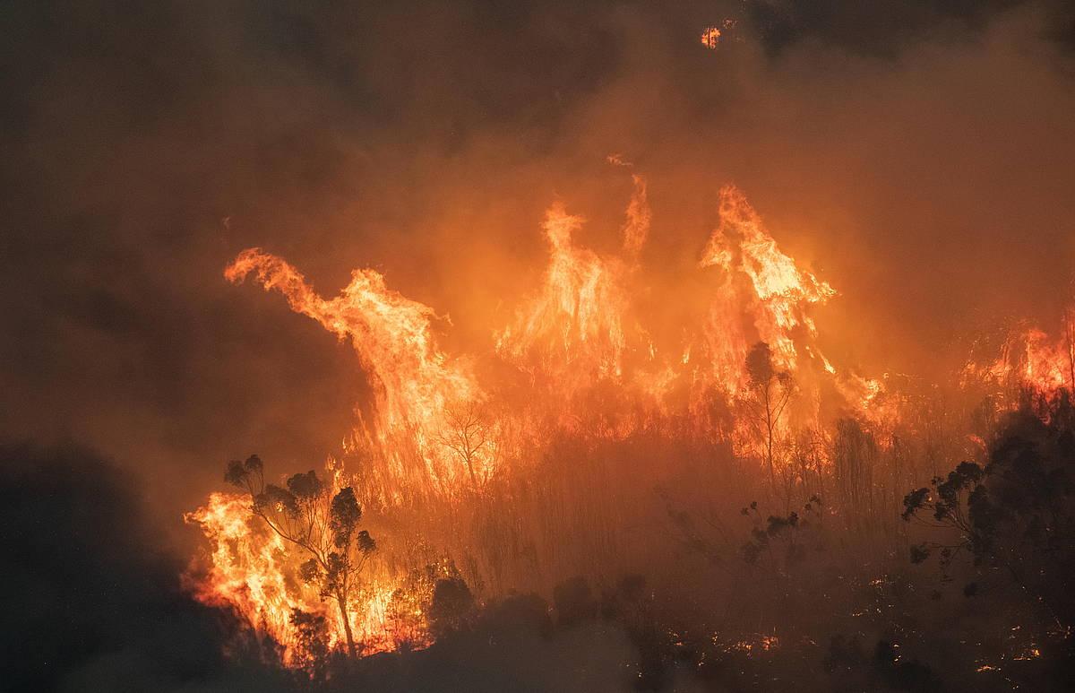 Klima larrialdia, XXI mendeko erronka