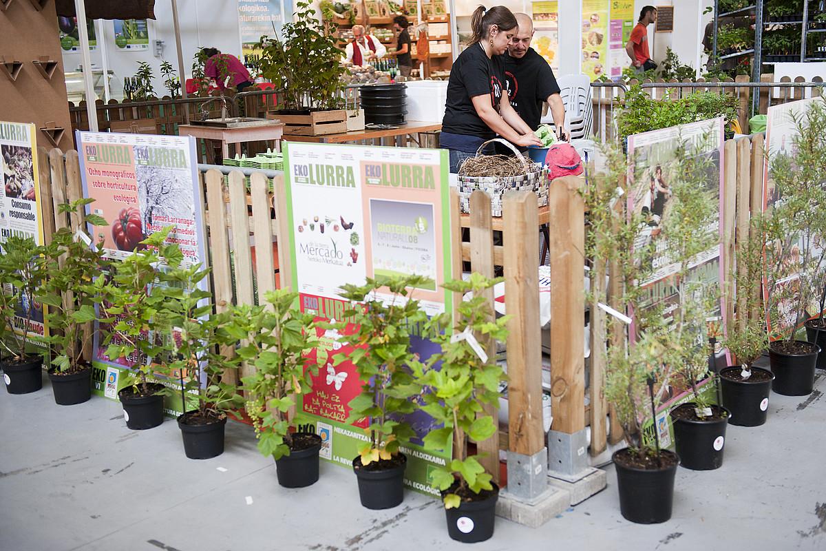 Bioterrako Eko plaza gunean landareak saltzen dituzte. ©GARI GARAIALDE / ARGAZKI PRESS