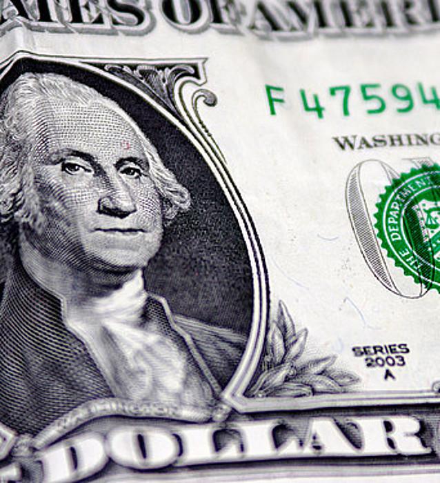 Dibisa guztiekin alderatuta igo da dolarraren balioa azken urtean.