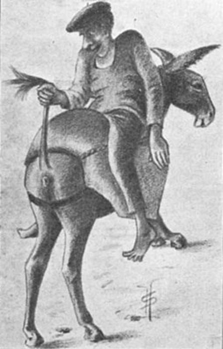 Asto bat toberetako marrazki batean. Sauveur Harrugetek argitaratu zuen irudia, 1936an, eta Antton Lukuren <em>Libertitzeaz</em> liburuan ere ageri da.