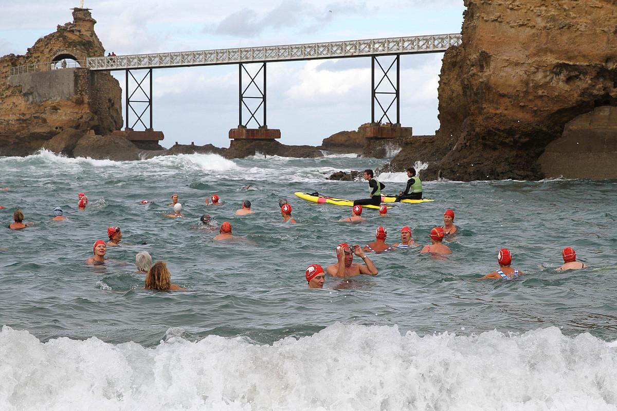 Miarritzeko Les Ours Blancs klubeko bainulariak Portu Zaharrean, joan den azaroaren 25ean. ©AURORE LUCAS