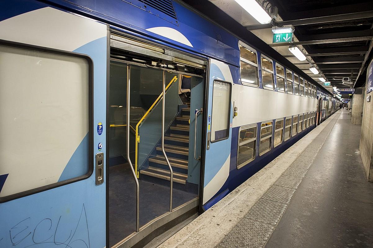 Bi adarretan banatua da SNCFa: alde batetik, SNCF-Sarea, burdinbideez arduratzen dena, eta, beste alde batetik, SNCF-Mugikortasuna, trenak esplotatzen dituena. ©JEREMY LEMPIN / EFE