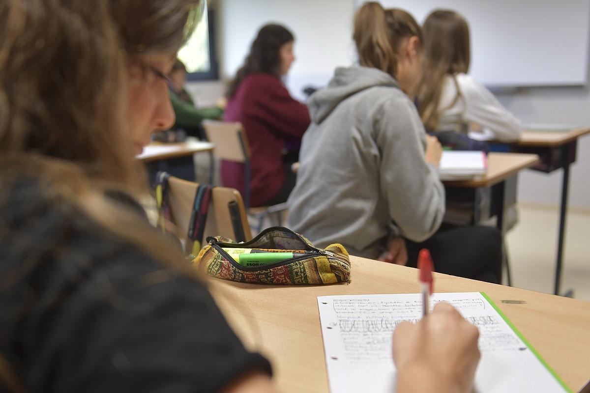 Hamasei ikastetxetan ezarri dute Skolae programa.