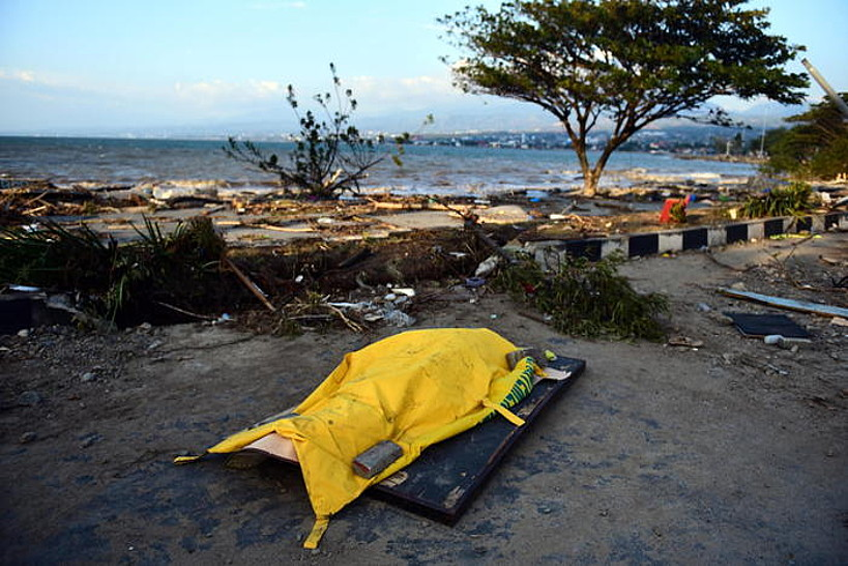 Tsunamian hildako pertsona baten gorpua itsasertzean, Palun.