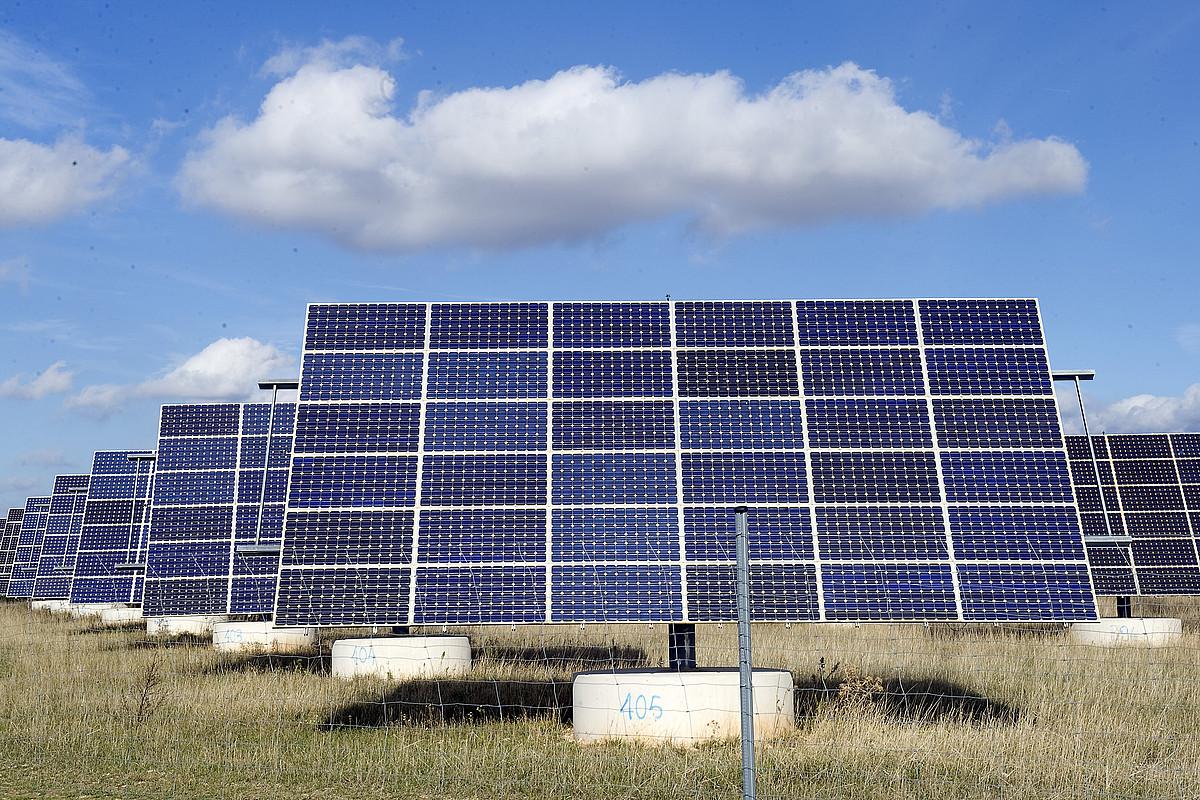 Plaka fotovoltaikoak Pitillasen, Nafarroan. ©IDOIA ZABALETA / FOKU