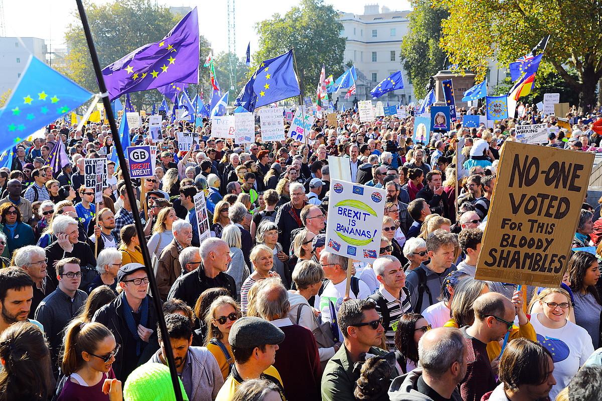 Iazko urrian 700.000 herritar atera ziren Londresko kaleetara bigarren erreferendum baten alde. ©VICKIE FLORES / EFE
