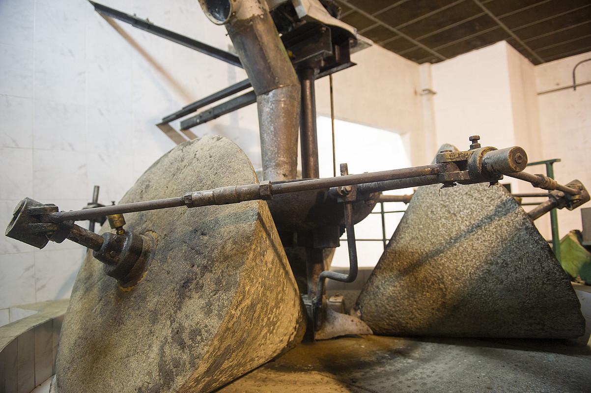 Oliba olioa egiteko dolarea, Moredan. ©IDOIA ZABALETA / FOKU
