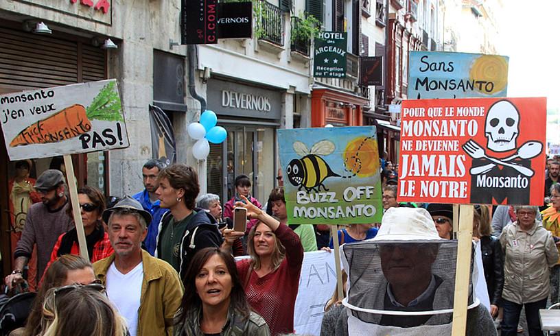 Monsantoren kontrako protesta bat Baionan, 2015ean.