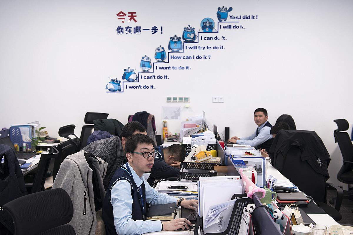 <b>Motibazioa. </b>DeepBlue Technologyko langileak, lanean eta erdi lo, enpresaren leloen azpian. ©ZIGOR ALDAMA