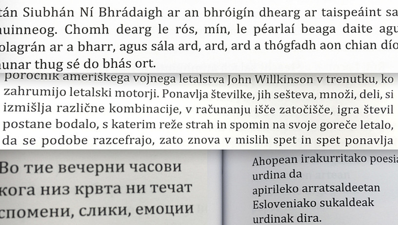Orotara, 34 idazlek parte hartu dute urteotan proiektuan, guztiak ere hizkuntza gutxituetan aritzen direnak. ©BERRIA