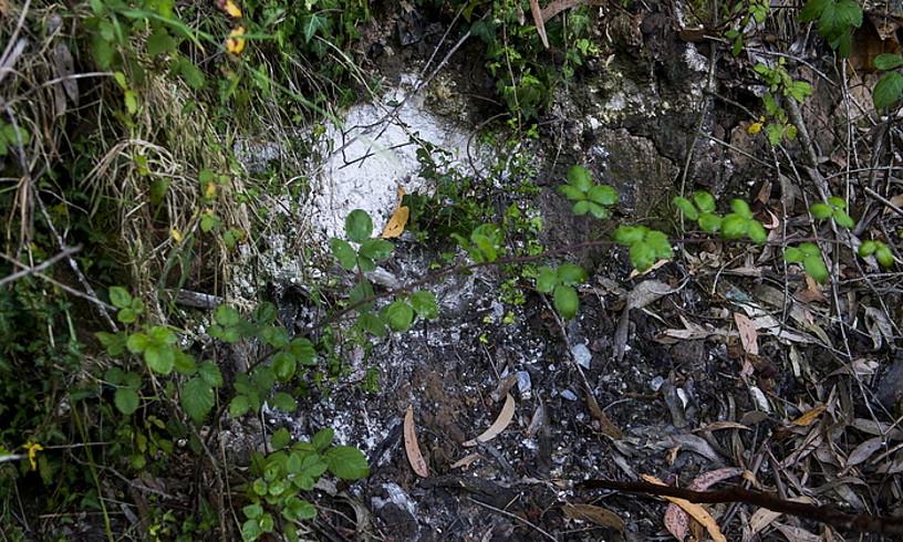 Lindano hauts txuria, Larrezabaleko eremuan (Lemoiz), duela bi aste hartutako irudi batean. ©LUIS JAUREGIALTZO / FOKU
