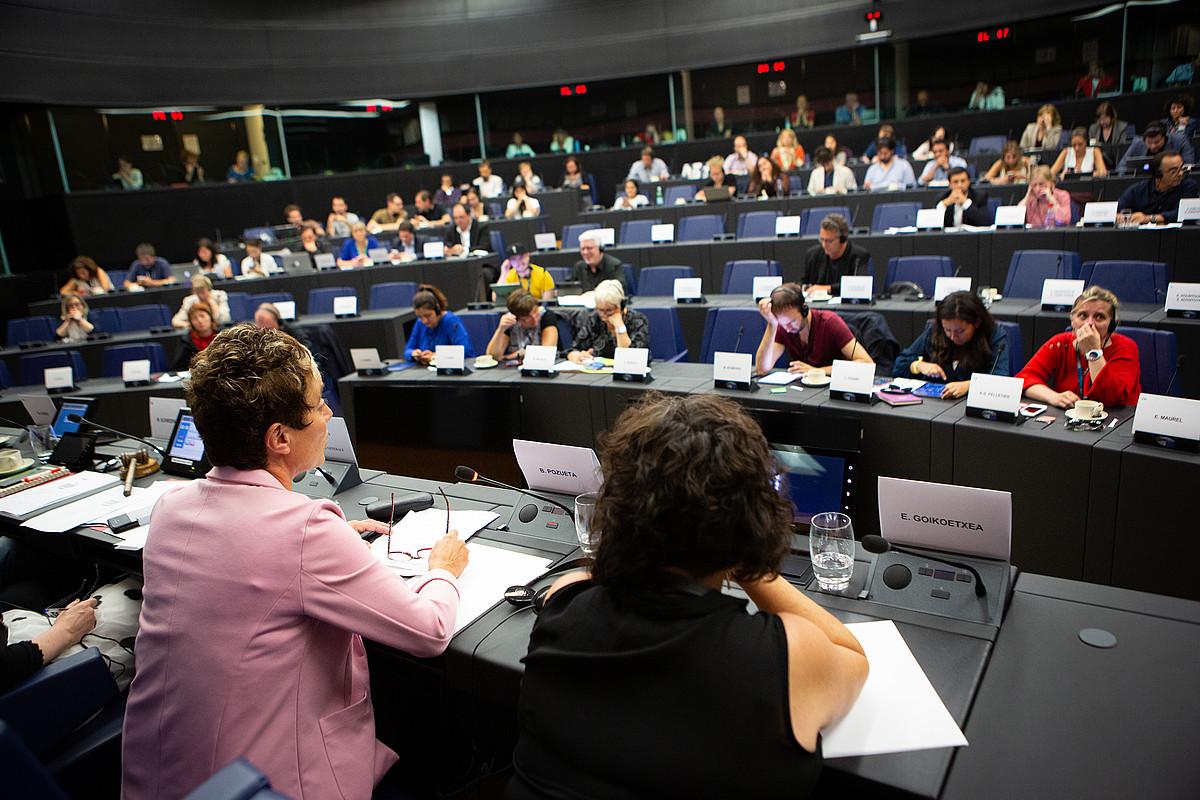 Edurne Goikoetxea eta Bel Pozueta, europarlamentarien aurrean azalpenak ematen, atzo, Estrasburgon. ©BERRIA