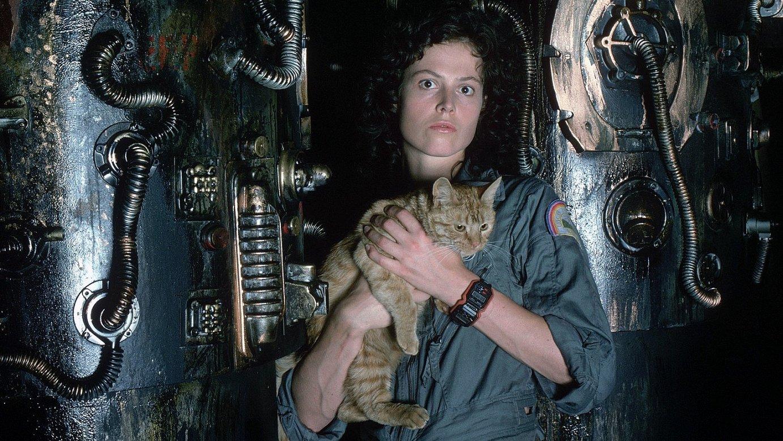 <em>Alien</em> filma aurkeztera etorri zen Sigourney Weaver Donostiara. ©BERRIA