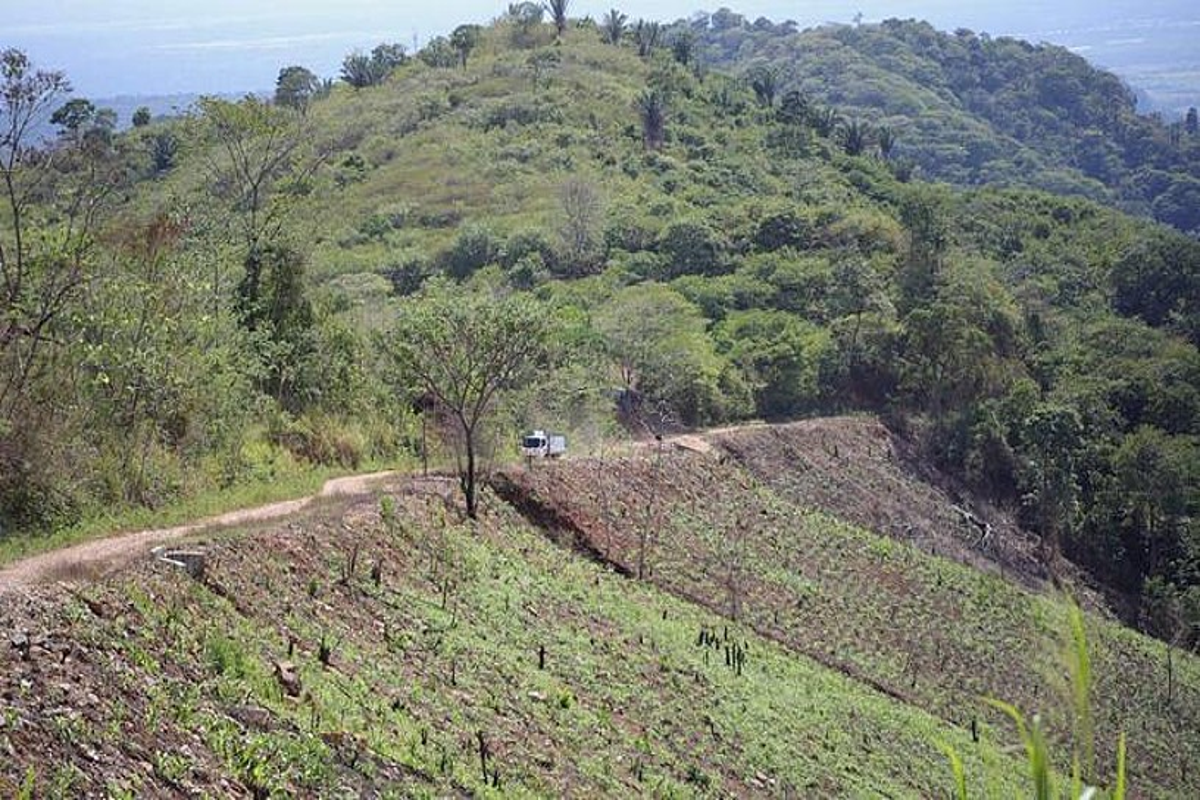 Catatumboko lurrak. Nekazarientzat behar zuten laguntzak multinazionalen esku geratzen ari dira. ©DAVID F. SABADELL