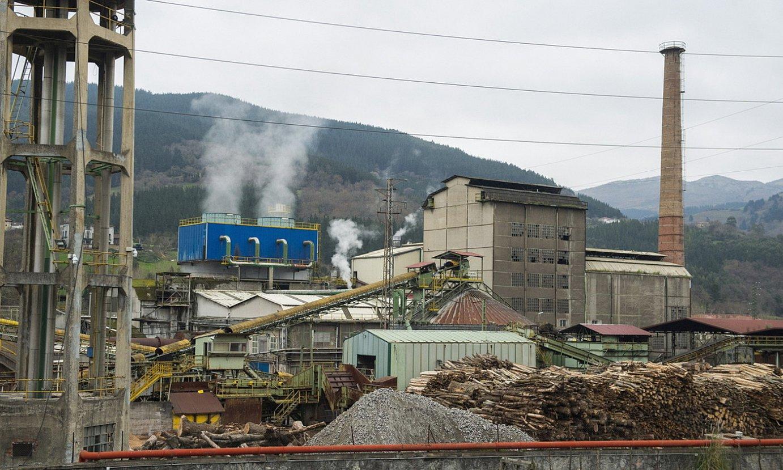 Orain lau urte jarri zuten martxan biomasa planta, Pastguren paper fabrika zegoen instalazioetan, eta haren ingurumen baimena luzatuta. ©MONIKA DEL VALLE / FOKU