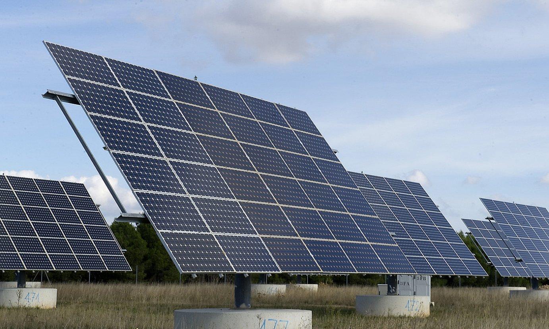 Parke fotovoltaiko bat Pitillasen (Nafarroa). ©IDOIA ZABALETA / FOKU