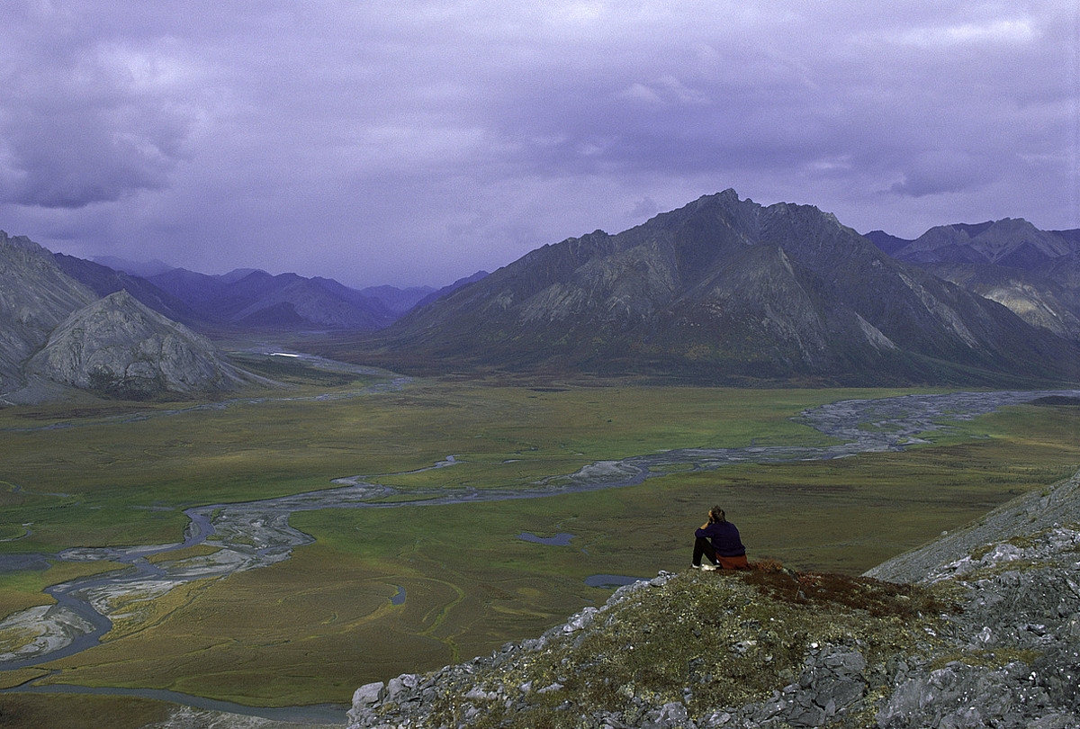 Artic National Wildlife Refuge babeslekua Alaska iparraldean dago. ©U.S. FISH & WILDLIFE SERVICE