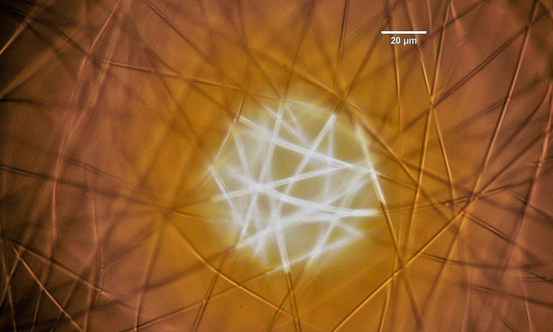 Nanohariz osatutako egitura. ©CIC NANOGUNE