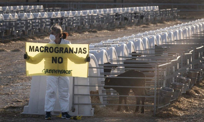 Greenpeaceko kideen protesta Caparrosoko etxaldean. ©GREENPEACE