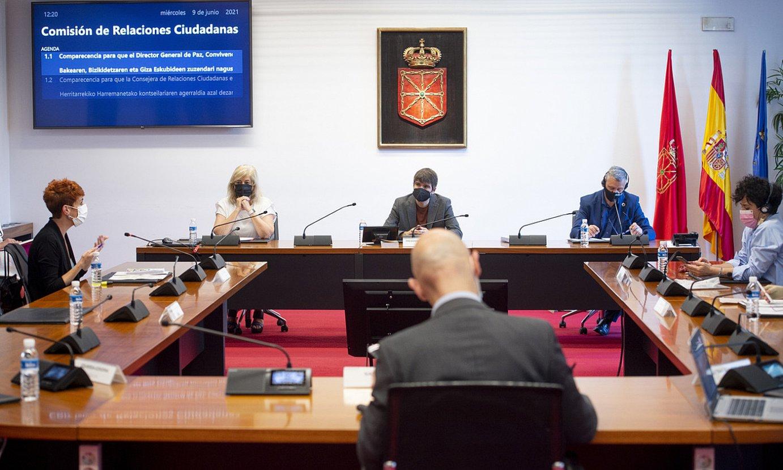 Ana Ollo eta Martin Zabalza, atzo, parlamentuko Herritarrekiko Harremanetako batzordean. ©IÑIGO URIZ / FOKU