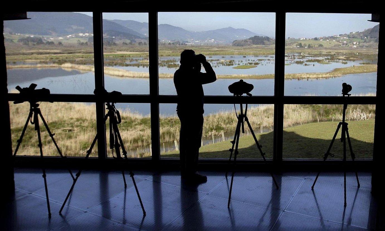 <b>Urdaibai Bird Center. </b>Padura, begiratokitik ikusita. ©ALFREDO ALDAI / EFE