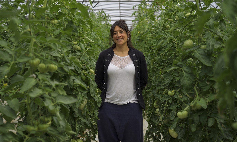 Rakel Lopez, bere tomate negutegiaren aurrean. ©ARITZ LOIOLA / FOKU