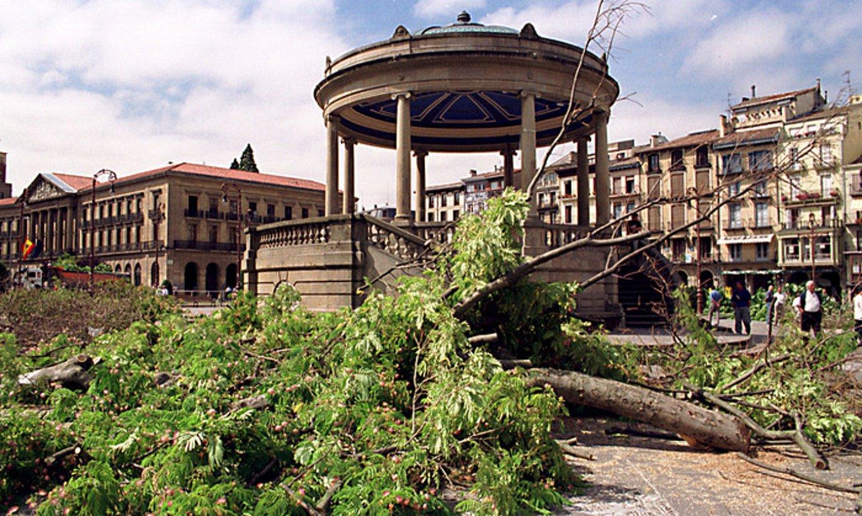 Gazteluko plaza, 2001eko uztailaren 23an. Egun hartako goizaldean moztu zituzten zuhaitzak. ©JOXE LACALLE