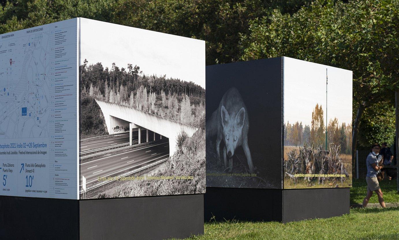 Getxophotok 26 erakusketa izango ditu guztira. Irudian, Marina Caneveren <em>Bridges are Beautiful</em> proiektuko zenbait irudi. ©MONIKA DEL VALLE / FOKU