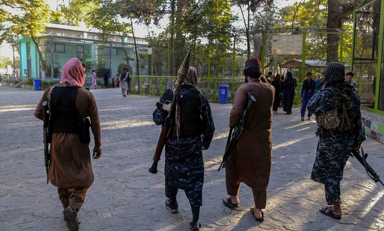 Talibanen patruila bat Kabulgo zoologikoan, atzo. ©EFE