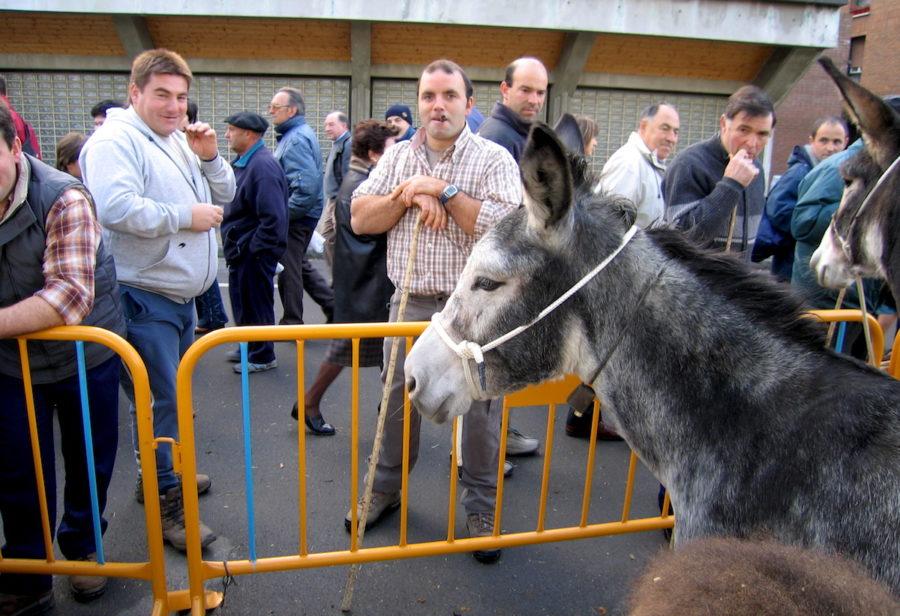 Santalutziko Feria