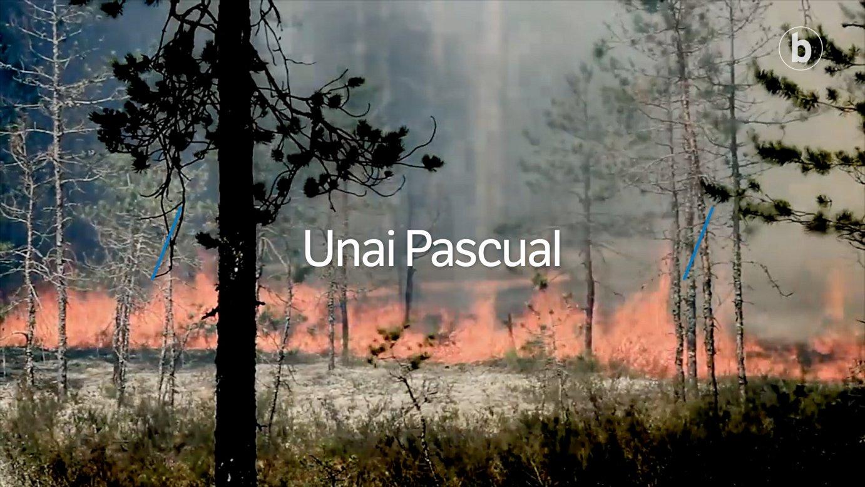 Elkarrizketa digitala: Unai Pascual