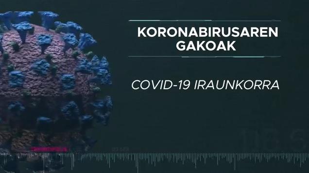 Covid-19 iraunkorra