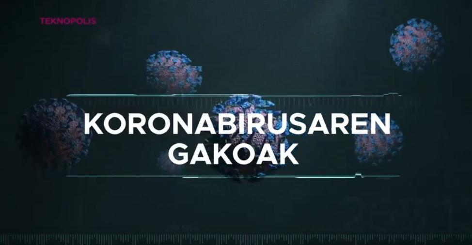 Koronabirus gakoak. Sindemia