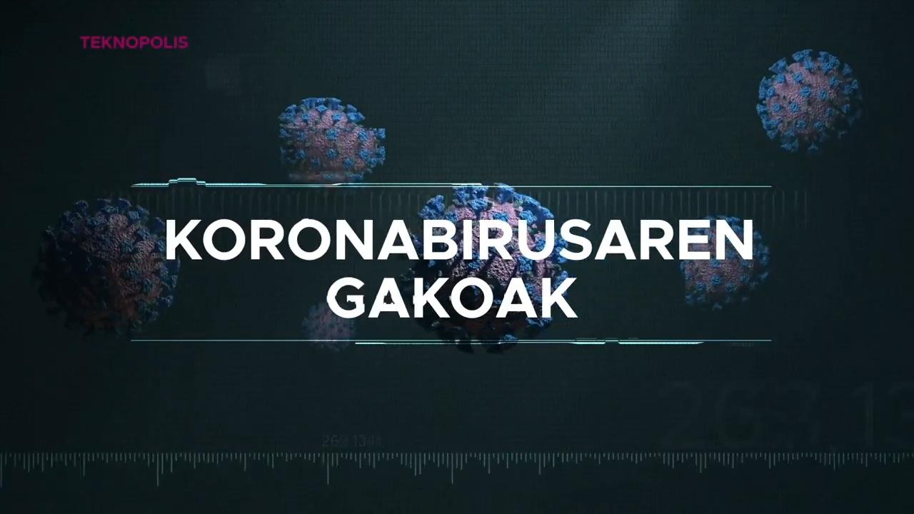 Koronabirusaren gakoak: test berriak